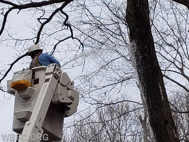 PECO assisting with the tree fire caused by the power line
